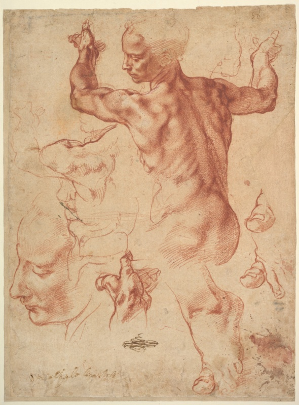 michelangelo drawing of Libyan Sibyl