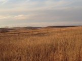 There's a special quality to the light in the Flint Hills, just this time of day, just this time of year.