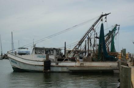 Fulton Marina