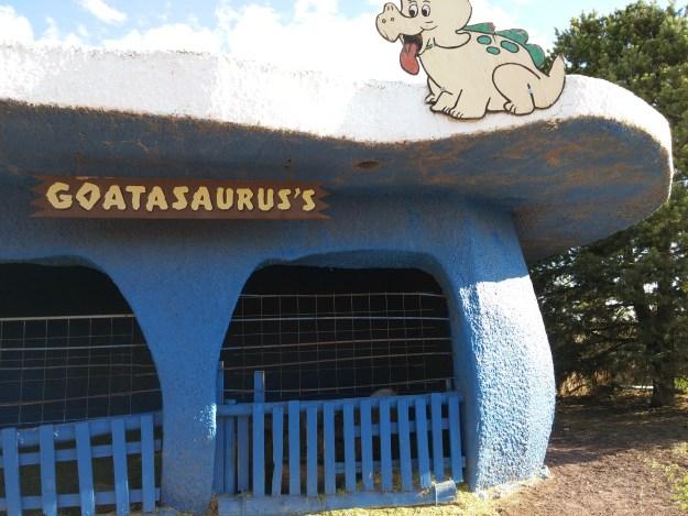 Goatasaurus's