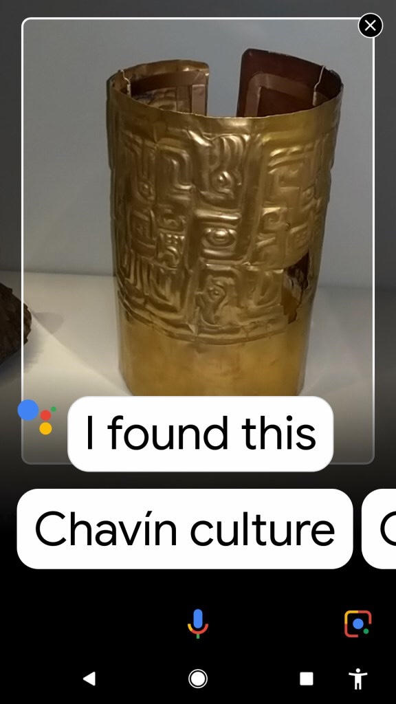Screenshot of google assistant identifying a gold band