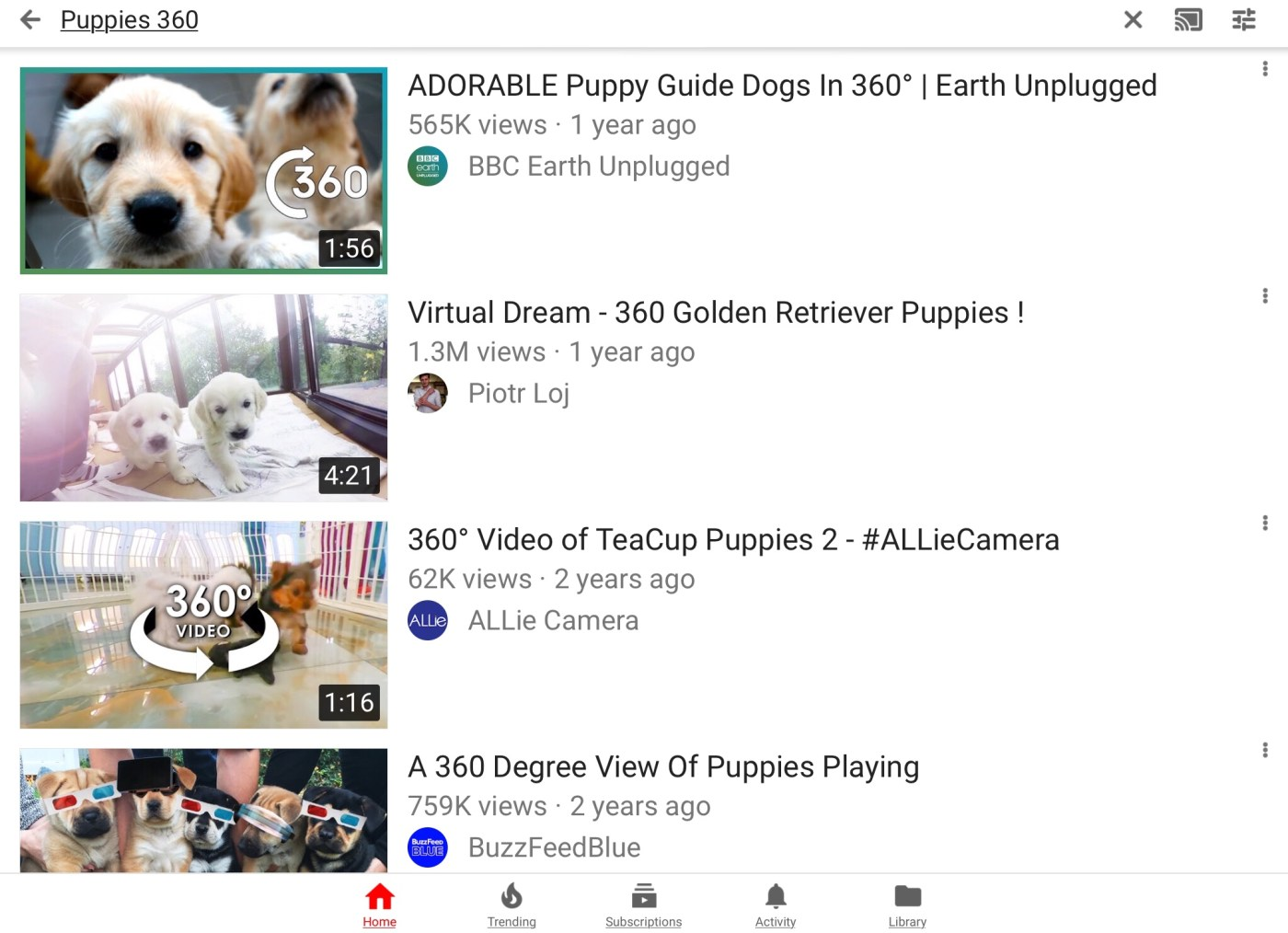 Search results from the YouTube app that show puppies in 360 video