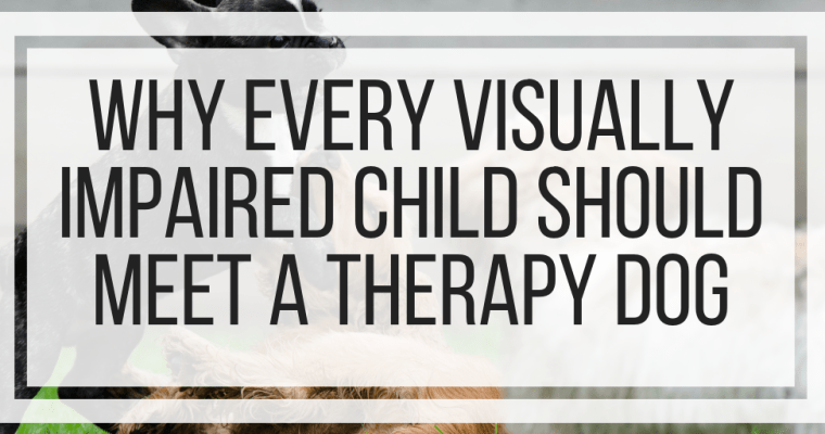 Why Every Visually Impaired Child Should Meet A Therapy Dog
