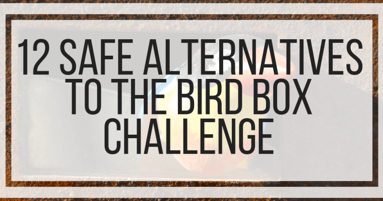 12 Safe Alternatives To The Bird Box Challenge