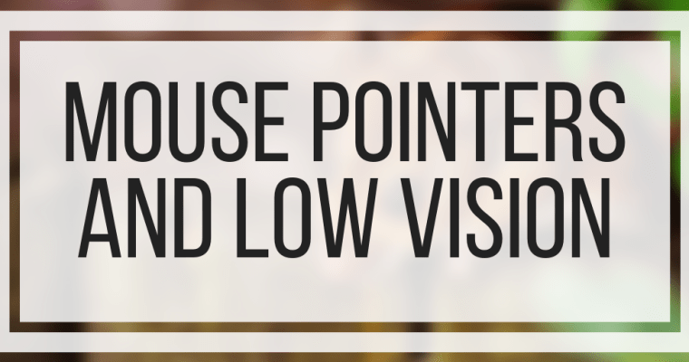 Mouse Pointers and Low Vision