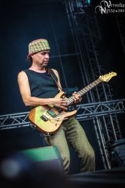 Waltari_Masters-Of-Rock-2013_18