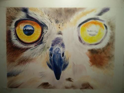 Tekening uil ogen 6