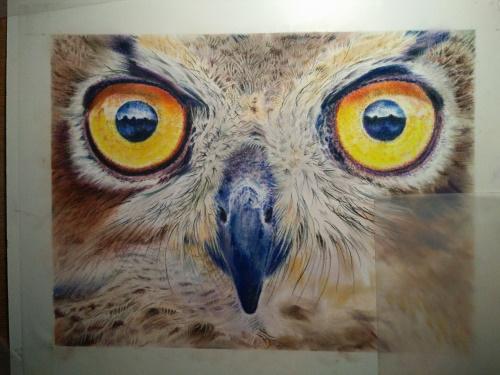 Tekening uil ogen 9