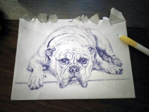 dog pen sketch