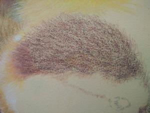kleurpotlood in laagjes