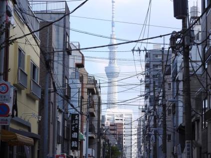 Japan (16)