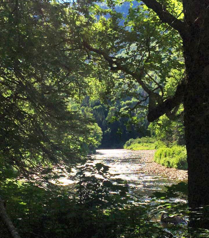 Photo dans le parc national de la Jacques-Cartier pour notre article Top 5 randos moins achalandées au Québec