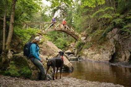 Image slider pour notre article Parc des Appaclaches : De pont en pont