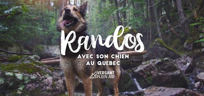 Où faire de la randonnée avec son chien au Québec (liste)