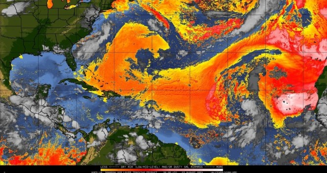 tropic_ssec_wisc_edu__real-time__sal__g16split__movies__goes16split__20210824.jpg