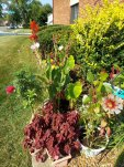 Red Peony_Cardinal Flowers_Guzmania Bromeliad_Pink Daisy Mammoth Mums_Marigolds.jpg