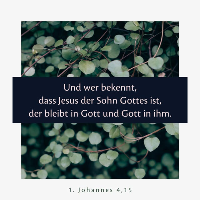Und wer bekennt, dass Jesus der Sohn Gottes ist, der bleibt in Gott und Gott in ihm.