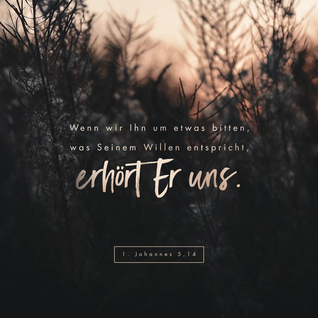Wenn wir ihn um etwas bitten, was seinem Willen entspricht, erhört er uns.