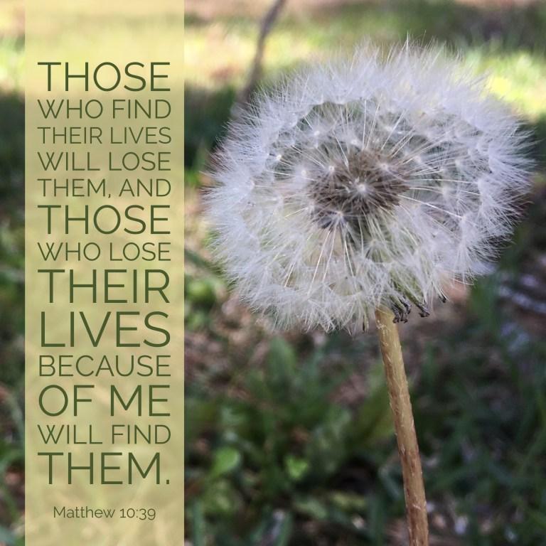 Verse Image for Matthew 10:39 - 1x1