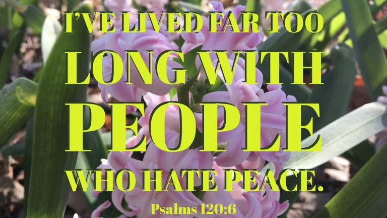 Verse Image for Psalms 120-6 - 16x9.jpg