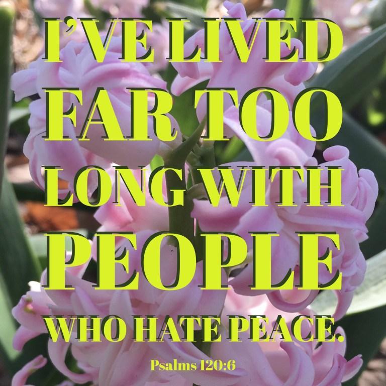 Verse Image for Psalms 120-6 - 1x1.jpg