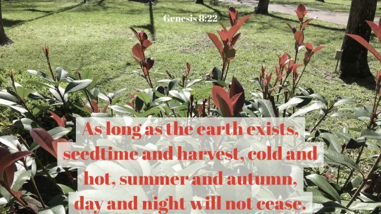 verse-video-for-genesis-8-22-16x9_hd.original-2