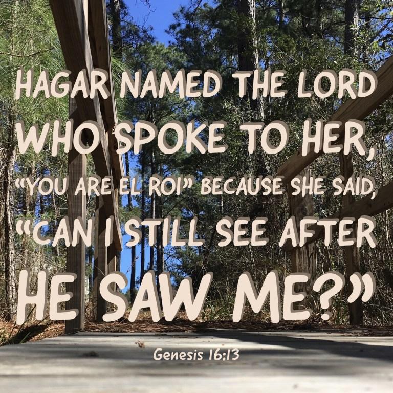 Verse Image for Genesis 16:13 - 1x1