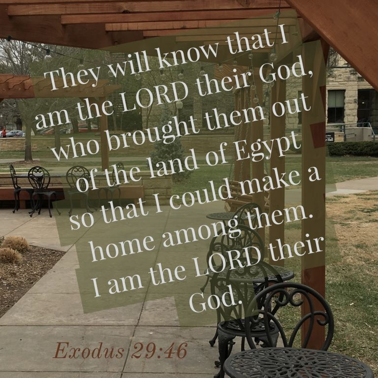 Verse Image for Exodus 29:46 - 1x1