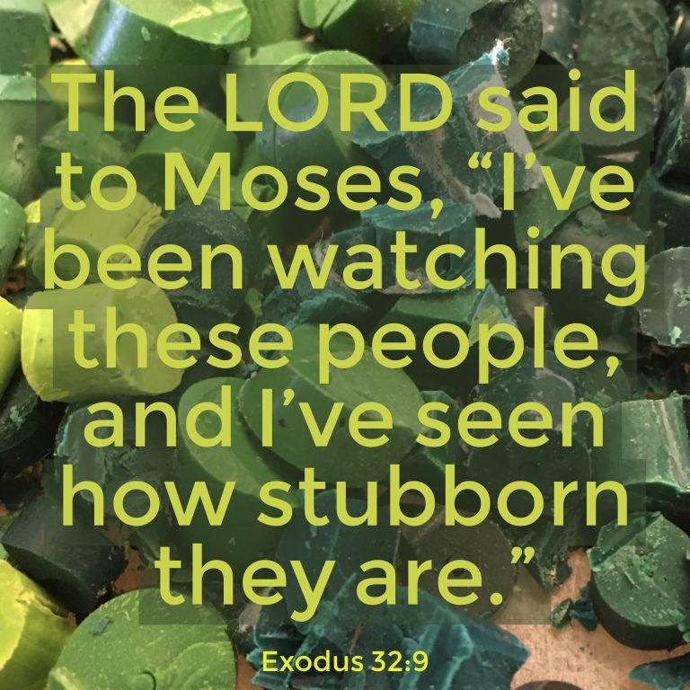 Verse Image for Exodus 32:9 - 1x1