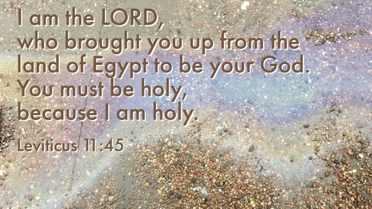 Verse Image for Leviticus 11:45 - 16x9