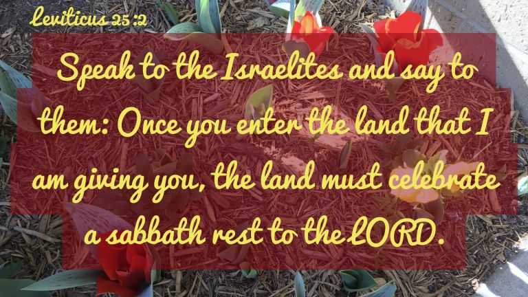 Verse Image for Leviticus 25:2 - 16x9