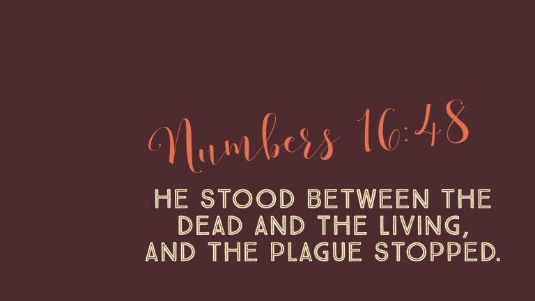 Verse Image for Numbers 16:48 - 16x9
