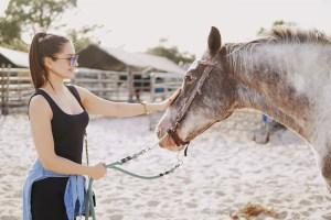 Pferdehaftpflichtversicherung Vergleich