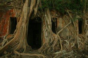 Spoke, Ross-eiland, Andaman-eilandgroep