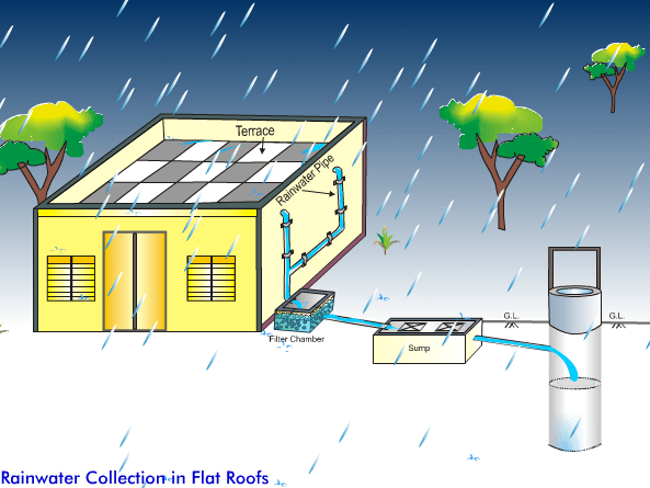 Rain Water Collection in Flat Roofs