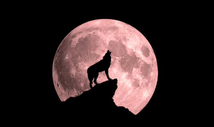 Wolf Moon Eclipse on January 10