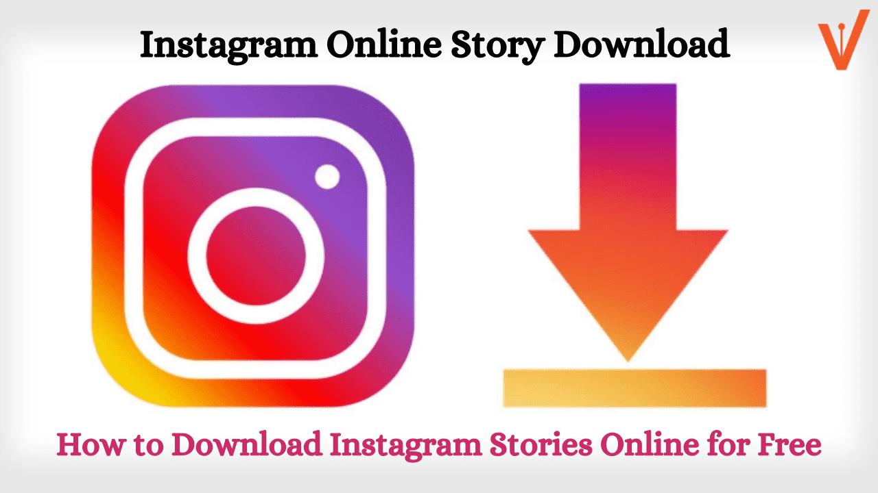 Instagram Online Story Download