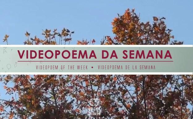 hojas galego