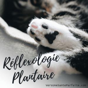 Soins en réflexologie plantaire