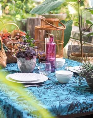 Déjeuner aux couleurs de l'été indien - Nouvelle collection Botanic*