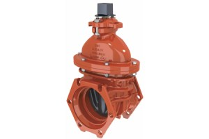 Mueller A2361 Resilient Wedge Valves