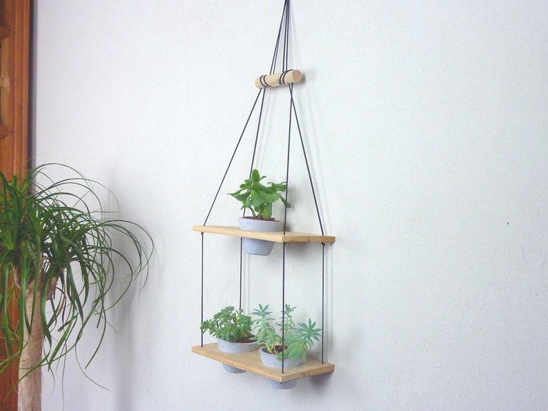 plante porte suspension