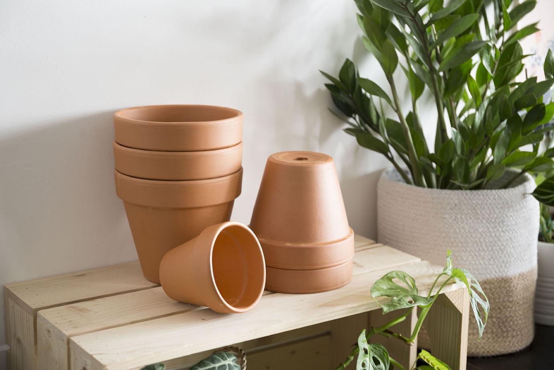 pots rempoter plante