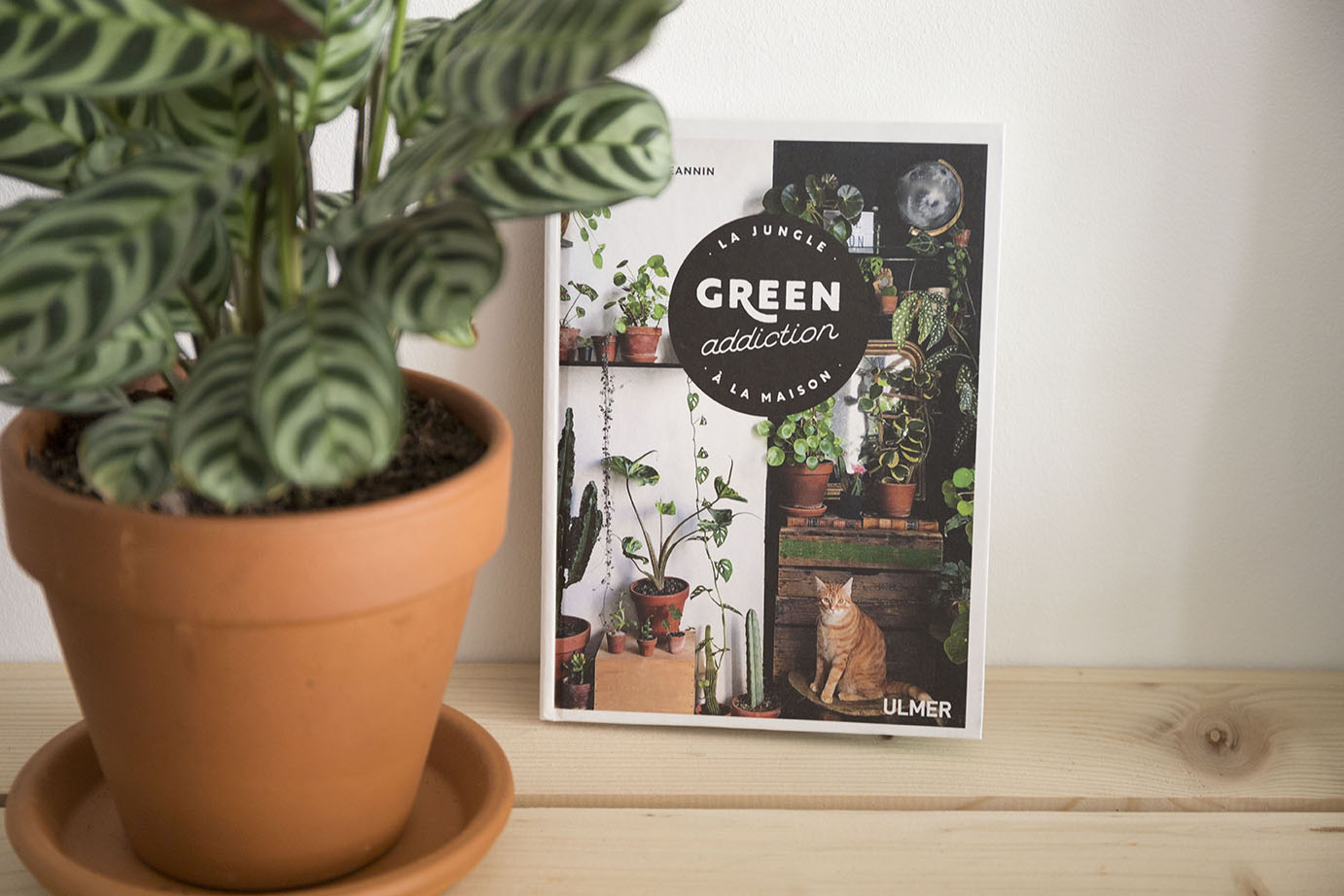green livre plantes selection