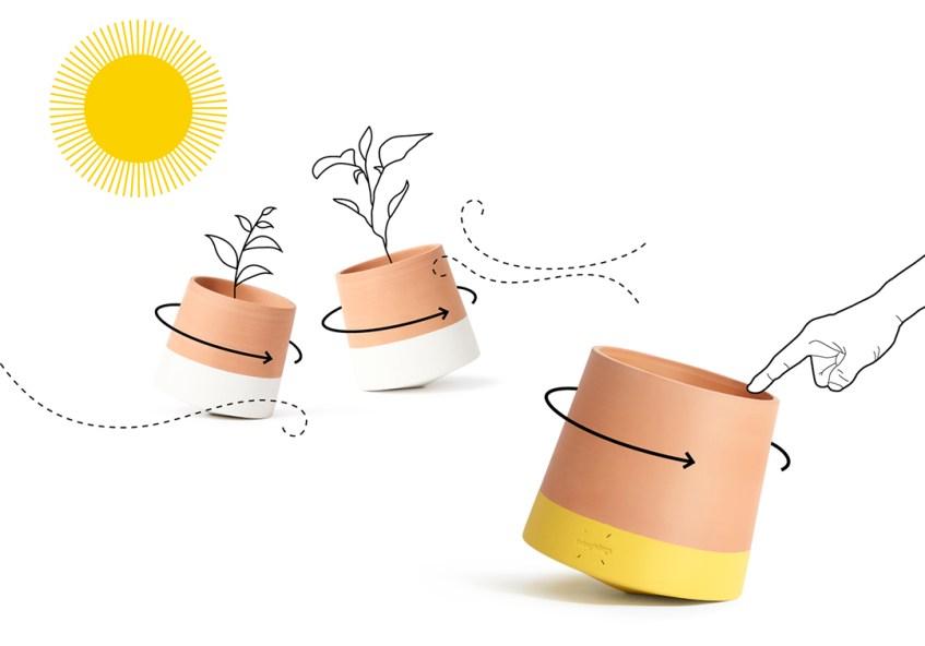 living things ceramique pots