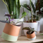 living things pots ceramique