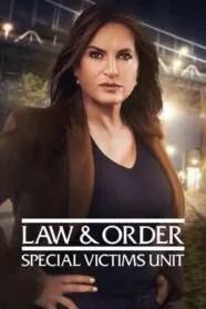 Ley y Orden: UVE 22×07 HD Online Temporada 22 Episodio 7