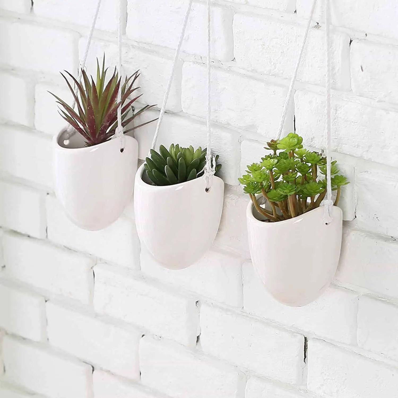 Best Succulent Wall Planters - Vertical Gardening Pros on Hanging Plant Pots Indoor  id=55110