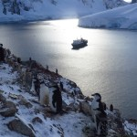 Antarctica 2018 – Joining Ortelious