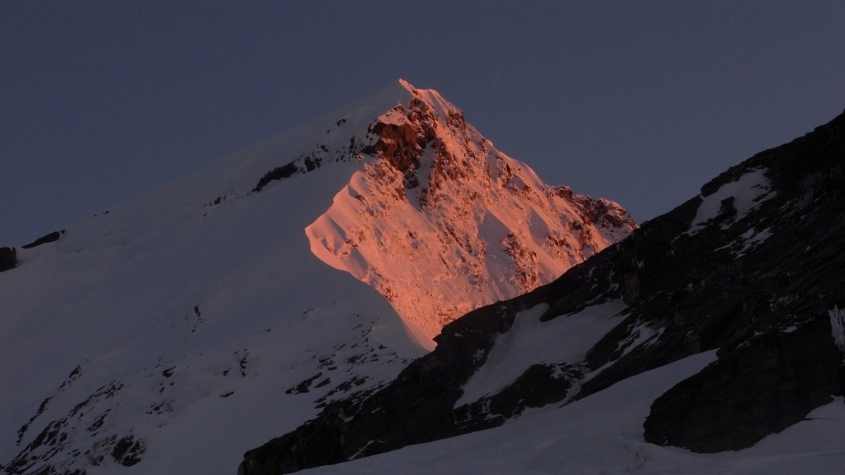 Mt Aspiring glows pink in the early morning sun.  South Face of Mt Aspiring
